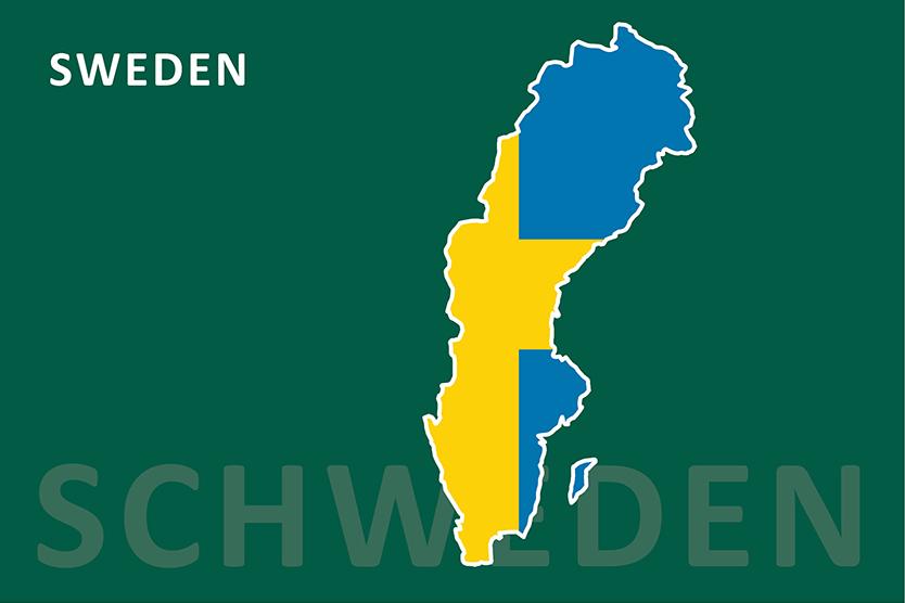 Schweden Karte und Flagge